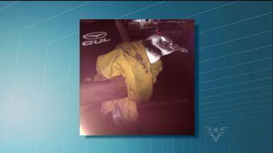Pescadores de São Vicente encontram um pinguim na praia do Itararé - O pinguim foi encontrado na noite da última segunda-feira (13), na praia do Itararé, em São Vicente. Pescadores que estavam próximos ao local ajudaram o animal e o levaram até uma base da guarda municipal.