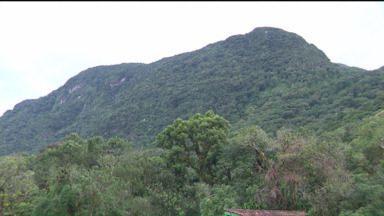 Bombeiros seguem buscas por casal perdido em uma montanha na Serra do Mar - Aventureiros faziam trilha pelo Morro do Sete, no domingo