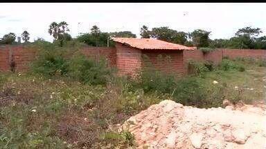 Área de preservação às margens do Rio Parnaíba é murada e usada de forma irregular - Área de preservação ambiental às margens do Rio Parnaíba é cercada e usada de forma irregular