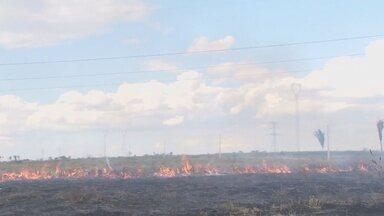 Focos de incêndio são registrados diariamente em Ariquemes - No período de seca o número de queimadas aumenta e traz riscos à saúde e coloca em risco casas.
