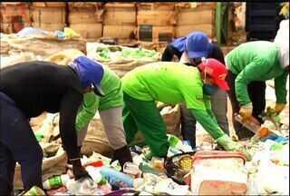 Brejo Santo, no Cariri, dá exemplo no destino correto de resíduos sólidos - Destino do lixo é um dos principais desafios pela Região Metropolitana do Cariri