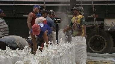 Galpão da Conab na Grande Fortaleza é abastecido de milho - Produto é vendido a preços mais baixo.