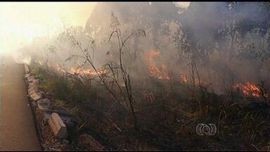 Confira a previsão do tempo para todo o estado de Goiás - Altas temperaturas do inverno e o clima bastante seco facilitam queimadas na vegetação.