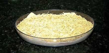 Confira uma receita deliciosa de Galinha à Califórnia! - Confira uma receita deliciosa de Galinha à Califórnia!
