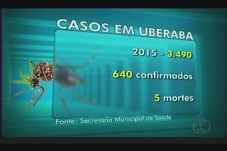 Bairro Alfredo Freire lidera índice de infestação de mosquito da dengue em Uberaba - Cidade registrou 640 casos confirmados neste ano. Cinco mortes em função a doença já foram confirmadas na cidade.