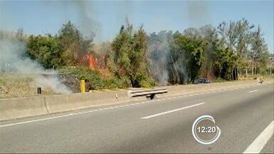 Telespectador registra queimada às margens da Dutra em Aparecida - Imagem foi enviada pelo app Vanguarda Repórter.