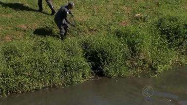 Objeto em rio mobiliza bombeiros e prejudica trânsito em Juiz de Fora - Pedestres e motoristas pararam para ver objeto no Rio Paraibuna.Duas corporações se deslocaram para retirar plástico do local.