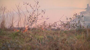 Área de antigo aterro sanitário pega fogo em Ribeirão Preto, SP - Além dos bombeiros, funcionários de uma usina ajudaram no trabalho para conter as chamas.