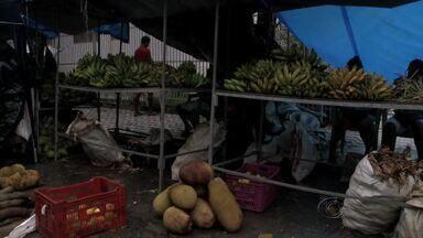 Feira Camponesa comercializa alimentos sem agrotóxicos em Maceió - Evento acontece no bairro do Pinheiro, no período de 20 a 22 de agosto.Cerca de 30 camponeses venderão verduras, frutas e legumes orgânicos.