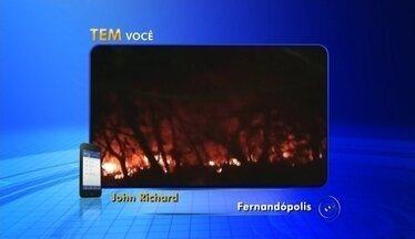 Incêndio destrói loja de produtos veterinários no centro de Ouroeste - Um incêndio destruiu uma loja de produtos veterinários e uma clínica no centro de Ouroeste (SP) nesta segunda-feira (24).