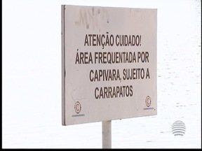Cidade da Criança usa homeopatia para evitar carrapatos - Parasitas existem no parque devido as capivaras que ficam no local.