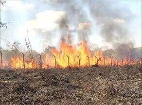 Incêndio perto de um posto de combustíveis assusta moradores da região sul da capital - Incêndio perto de um posto de combustíveis assusta moradores da região sul da capital
