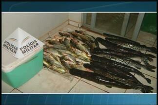 Homem é preso por pesca ilegal em Coromandel - Suspeito foi abordado pela Polícia Militar em uma operação na MG-188. Foram encontrados 64 quilos de pescado.