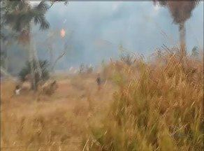 QVT: Morador de Nova Rosalândia flagra incêndio em fazenda - QVT: Morador de Nova Rosalândia flagra incêndio em fazenda
