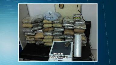 Polícia apreende 40 quilos de 'supermaconha' em Fortaleza - Grupo foi preso na Grande Fortaleza.