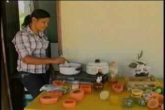Em Santa Maria da Boa Vista, o leite de cabra está servindo para fazer sabonete - Dos caprinos e ovinos, o sertanejo aproveita quase tudo.