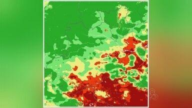 Aumento no número de queimadas causa cheiro forte na capital - Mato seco fica mais vulnerável neste período de calor intenso.