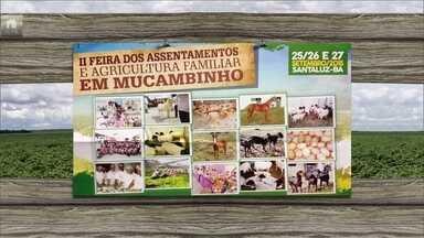 Confira festas e eventos rurais desta semana pelo país - Na Bahia tem feira empresarial da agricultura familiar. Em Minas Gerais, tem a festa do leite. Em São José dos Cordeiros tem a festa do mel.