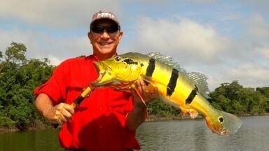 Pesca Legal: Zenizir dá dicas de pesca esportiva - Veja o que você pode encontrar nesta temporada.