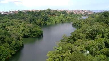 Especial primavera: Faça um passeio aéreo pelos principais parques de Salvador - Veja na reportagem especial do JM desta quarta (23).