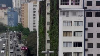 Conheça o jardim vertical: ele transforma a 'paisagem de concreto' de São Paulo - O repórter Fabrício Battaglini conta como funciona a ideia