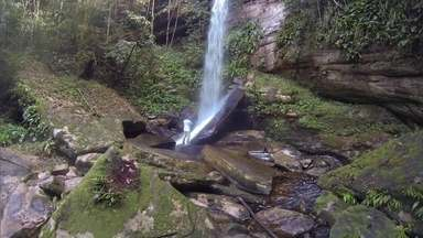 Conheça as belas cachoeiras e natureza preservada de Presidente Figueiredo (AM) - O Tô de Folga desta sexta-feira (25) foi para a Amazônia. O repórter Ricardo Soares viajou para Presidente Figueiredo, uma cidade que reúne belas cachoeiras, trilhas e muita natureza. Veja como foi o passeio:
