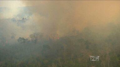 Ibama combatem incêndio que ameaçava aldeias indígenas Araribóia em Amarante (MA) - Ibama combatem incêndio em reserva Araribóia em Amarante (MA)
