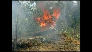 Tempo seco provoca incêndio no Norte do ES - O Corpo de Bombeiros calcula que pelo menos 30 hectares da reserva da Jaguaré tenham sido atingidos pelo fogo.