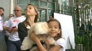 Animais são abençoados no Dia de São Francisco - Neste domingo, Dia de São Francisco, cachorros, gatos e outros animais foram abençoados em igrejas do Rio.