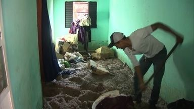Temporal deixa estragos em Vila Basevi, no DF - A Vila Basevi, no Distrito Federal, sofreu com o temporal de terça-feira (6).
