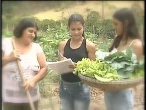 Conheça a história da produtora rural do Vale do Rio Doce que ganhou destaque mundial - Ela alia trabalho e estudo da faculdade de geografia.