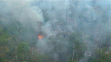 Quase 200 homens tentam apagar fogo na Floresta Amazônica, no MA - Incêndio começou há um mês e destruiu área equivalente a 111 mil campos de futebol. Chamas ameaçam tribos indígenas da região.