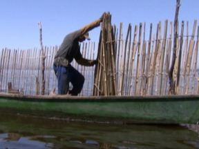 Baía de Guanabara - A repórter Poliana Abritta acompanhou uma equipe de pesquisadores da UFRJ que faz o monitoramento da qualidade da água da baía e viu de perto o trabalho de pescadores que usam a técnica do curral para tirar seu sustento.