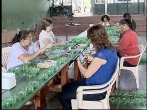 Rancharia prepara decoração de natal feita com garrafas PET - Cerca de 100 mil garrafas podem ser doadas pela população.