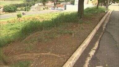 Falta de calçada causa transtornos para moradores no bairro Jardim São Luís, em Franca - Pedestres precisam utilizar as ruas para transitar pelo bairro e dividem espaço com os veículos.