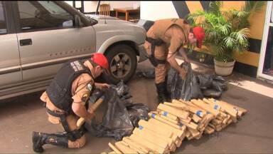 Polícia apreende 160 kg de maconha em uma camionete em Cambé - A apreensão foi na quinta-feira (05) à tarde. A droga estava escondida no fundo falso de uma camionete e foi descoberta porque a polícia desconfio do nervosismo do motorista. Tudo com a ajuda de cães farejadores.