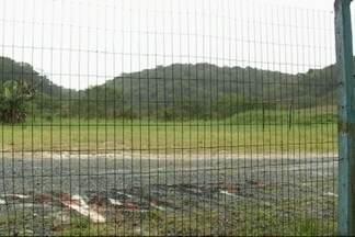 JA nos Bairros: Moradores do Itinga pedem novas áreas de lazer - JA levou pedido dos moradores ao poder público.