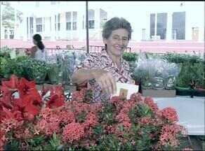 Feira realiza exposição de mais de 200 espécies de plantas e flores em Araguaína - Feira realiza exposição de mais de 200 espécies de plantas e flores em Araguaína