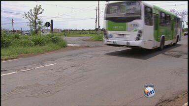 Moradores cobram sinalização em avenida movimentada de Ribeirão Preto, SP - Avenida Thomaz Alberto Whately não possui nenhum redutor de velocidade.