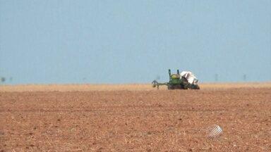 Falta de chuva atrasa o plantio de soja no oeste da BA; veja na previsão do tempo - Pode chover na região essa semana, mas ainda não será a quantidade esperada pelos agricultores. O plantio devia ter começado em outubro.