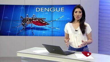43 pessoas morrem com sintomas de dengue desde janeiro de 2015 no ES - Segundo boletim da Secretaria de Saúde, foram 32 mil notificações da doença.