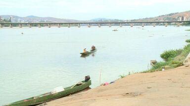 Peixes resgatados no Rio Doce começam a ser soltos em lagoas, no ES - Operação Arca de Noé quer retirar animais do rio antes que lama chegue.Mais de 50 barcos participam da ação que tem três pontos de captura.