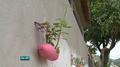 Moradora espalha plantas por comunidade em Vitória - A Beth mora no bairro Consolação e, com uma ideia simples, ela está deixando a rua onde vive muito mais bonita.
