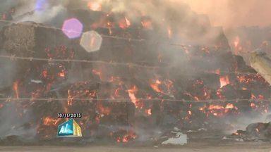 Incêndio atinge estoque de palha da empresa GranBio outra vez em Alagoas - Corpo de Bombeiros foi acionado para controlar as chamas.