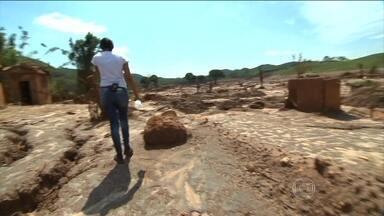JN mostra o que sobrou de Bento Rodrigues após tragédia - Tragédia da lama completa um mês no sábado (5). Phelipe Siani e Thiago Capelle foram até Bento Rodrigues e mostram a destruição impressionante.