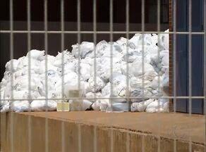 Lixo fica empilhado no maior hospital público do Tocantins - Lixo fica empilhado no maior hospital público do Tocantins