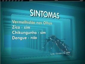 Saiba quais são as diferenças entre dengue, febre Chikungunya e zika vírus - Sintomas variam.