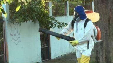 24 horas de combate ao Aedes Aegypti será presente de Londrina - Diante do risco de epidemia de dengue e da ameaça de outras doenças, como a Zika, a cidade e a região precisam fazer um mutirão contra a doença.