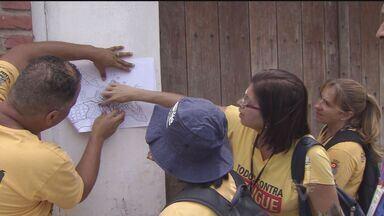 Guarujá é a cidade da região com o maior risco de dengue - Informação é de um levantamento do Ministério da Saúde.