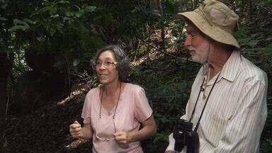 Casal observador - Em Campinas (SP), casal que se dedica a contemplar as aves há mais de 20 anos.
